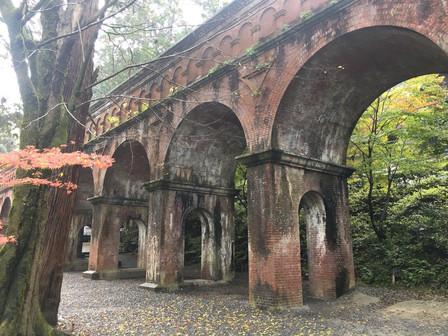 LiveRunトレーナーMaiのオススメする秋に行きたい京都のスポット