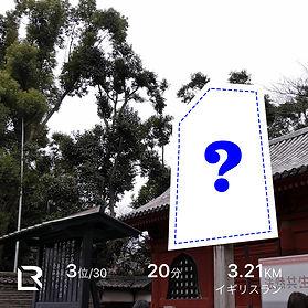 Hatsumoude_.jpg