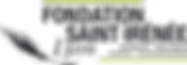 FSI logo.png