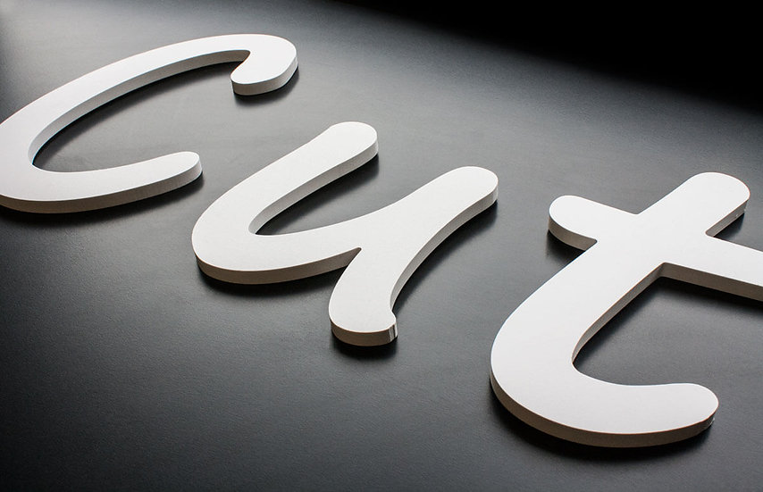 Letter cut Acrylic signs