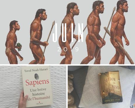 L'Homo sapiens et le curieux