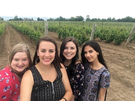 Les vignobles du comté de Prince Edward