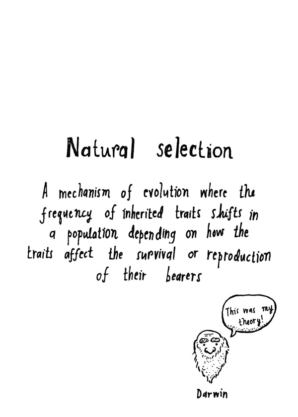 Natural selection (text)
