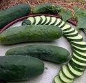 poinsett-76-cucumber-7195256feee77536a85
