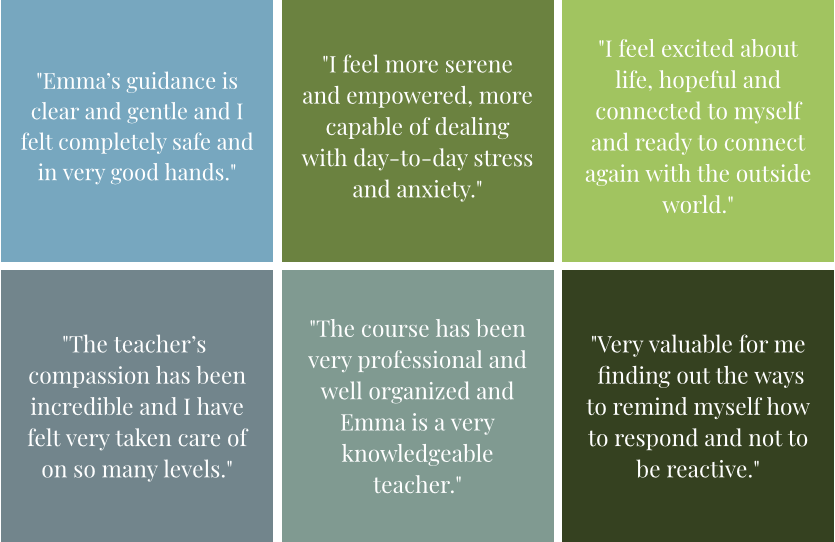 Reviews of Mindfulness course