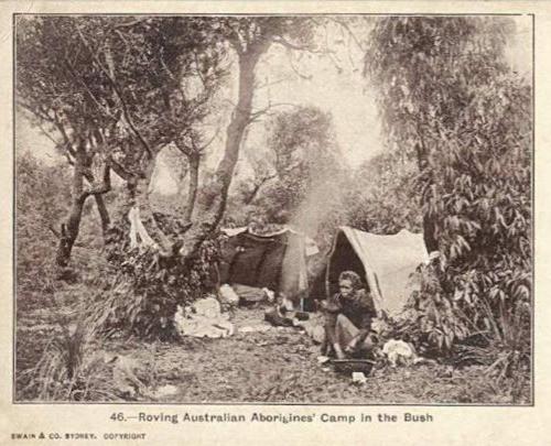 Aboriginal bush camp