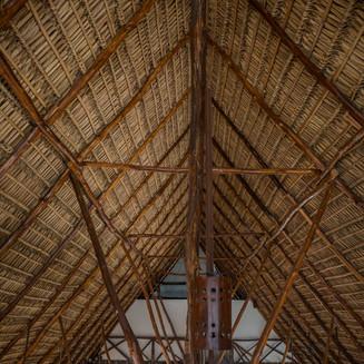 salvy roof.jpg