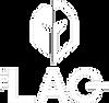 LogoBlancTransparent (1).png