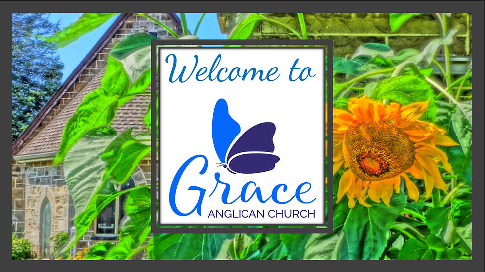 Welcome to Grace with Sunflower and Buil