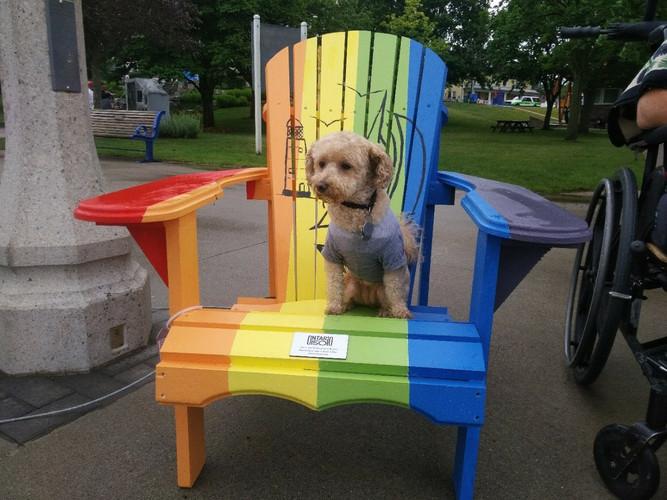 Lucy on rainbow chair.jpg