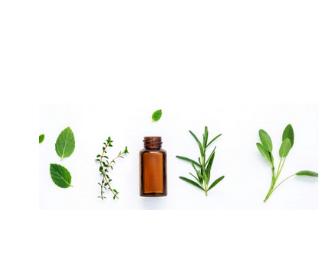 Homeopathy at Home
