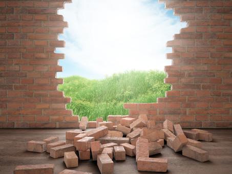 Healing Trauma Brick by Brick