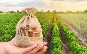 """""""Plano Safra 2021/22 privilegia o futuro"""", diz secretário da Agricultura do PR."""