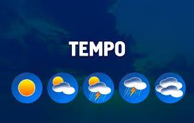Soja Brasil: chuvas afetam o Sul, o Sudeste e o Centro-Oeste do país