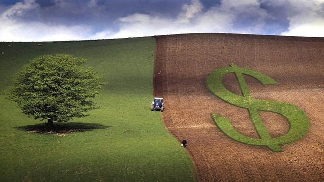 Contratação do crédito rural tem alta de 36% e ultrapassa R$ 64 bilhões em dois meses do Plano Safra