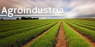 Gargalo na cadeia de insumos e matérias-primas começa a atingir agroindústrias