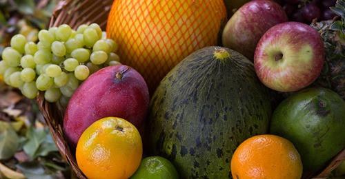 Mapa discute o uso de irradiação em alimentos no Brasil como opção para evitar desperdícios