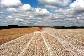 JP Desenvolvimento agrícola