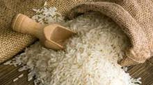 Arroz: indicador renova máxima real; atividades de semeio se iniciam no RS