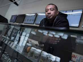 New marijuana laws in 2019 could help black and Latino drug dealers go legal