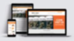 bluntsandmoore-web.jpg