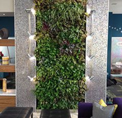 Living wall Fort Collins