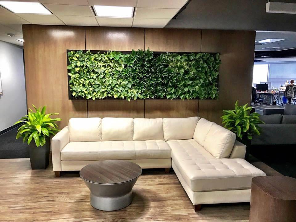 SendGrid Plant wall