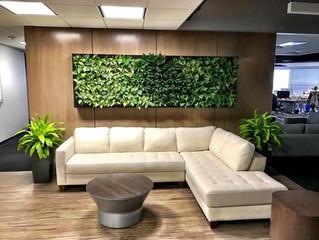SendGrid gets a new plant wall.