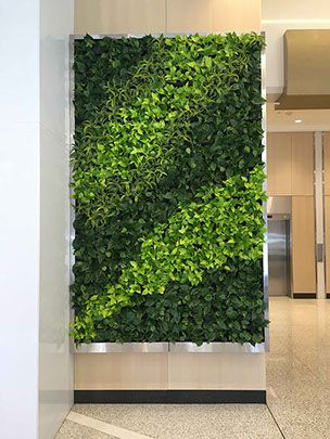 Guarantee bank building living wall