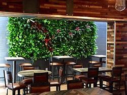Denver restaurant green wall