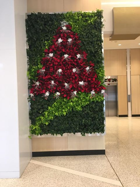 holiday decor in green wall