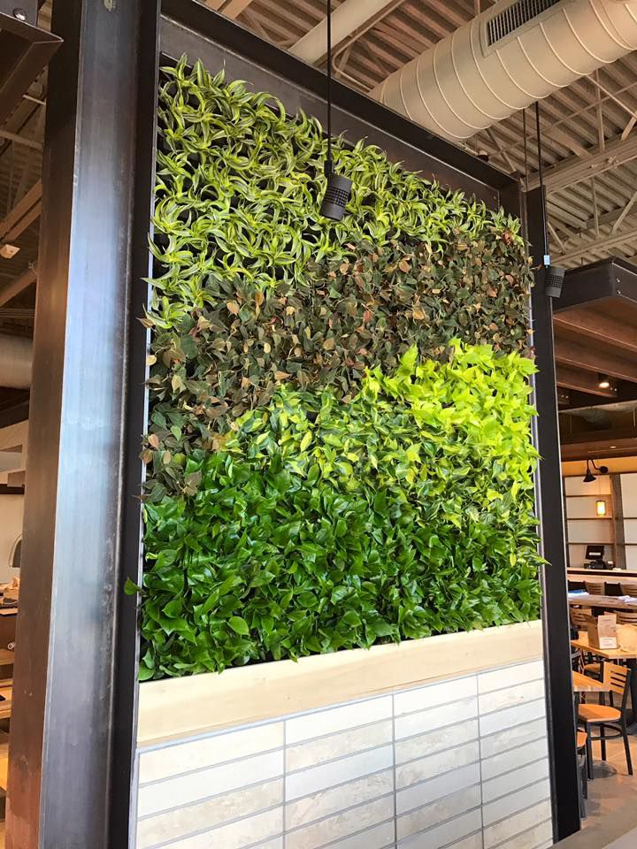 Colorado Springs living wall