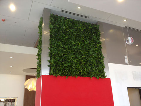 Dual Brand Hotel Green Wall