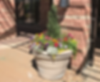 Annuaflower pots