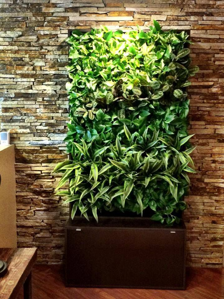 Pre-made living wall