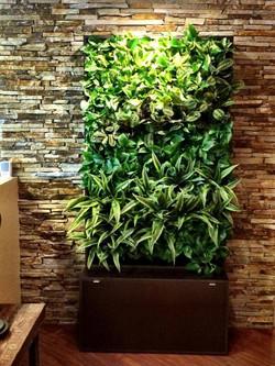 Pre-made living wall