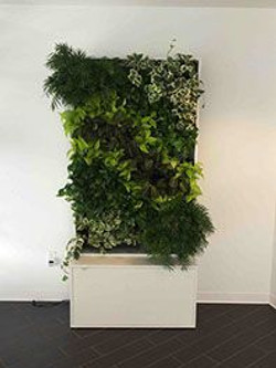 pre-made green wall
