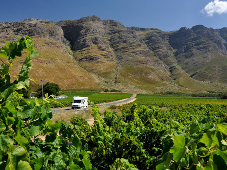The constantly changing world of South African Wine