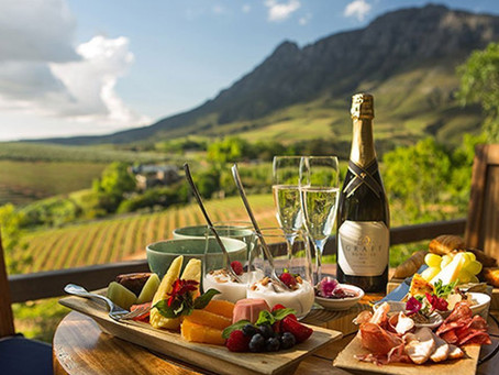 A Beginners Guide to South African Wine
