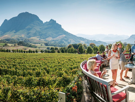The Longest Wine Route in the World