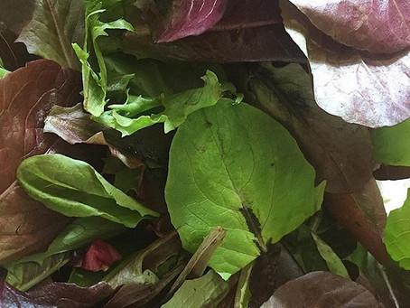 Happy Spring! Let's Detox With Some Leafy Greens!