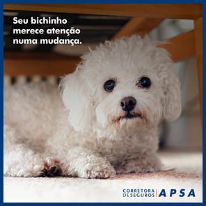 POST_QUINTA_ORG_DICA MUDANÇA.jpg