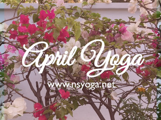【Yoga Class】April Schedule - Delhi & Gurgaon