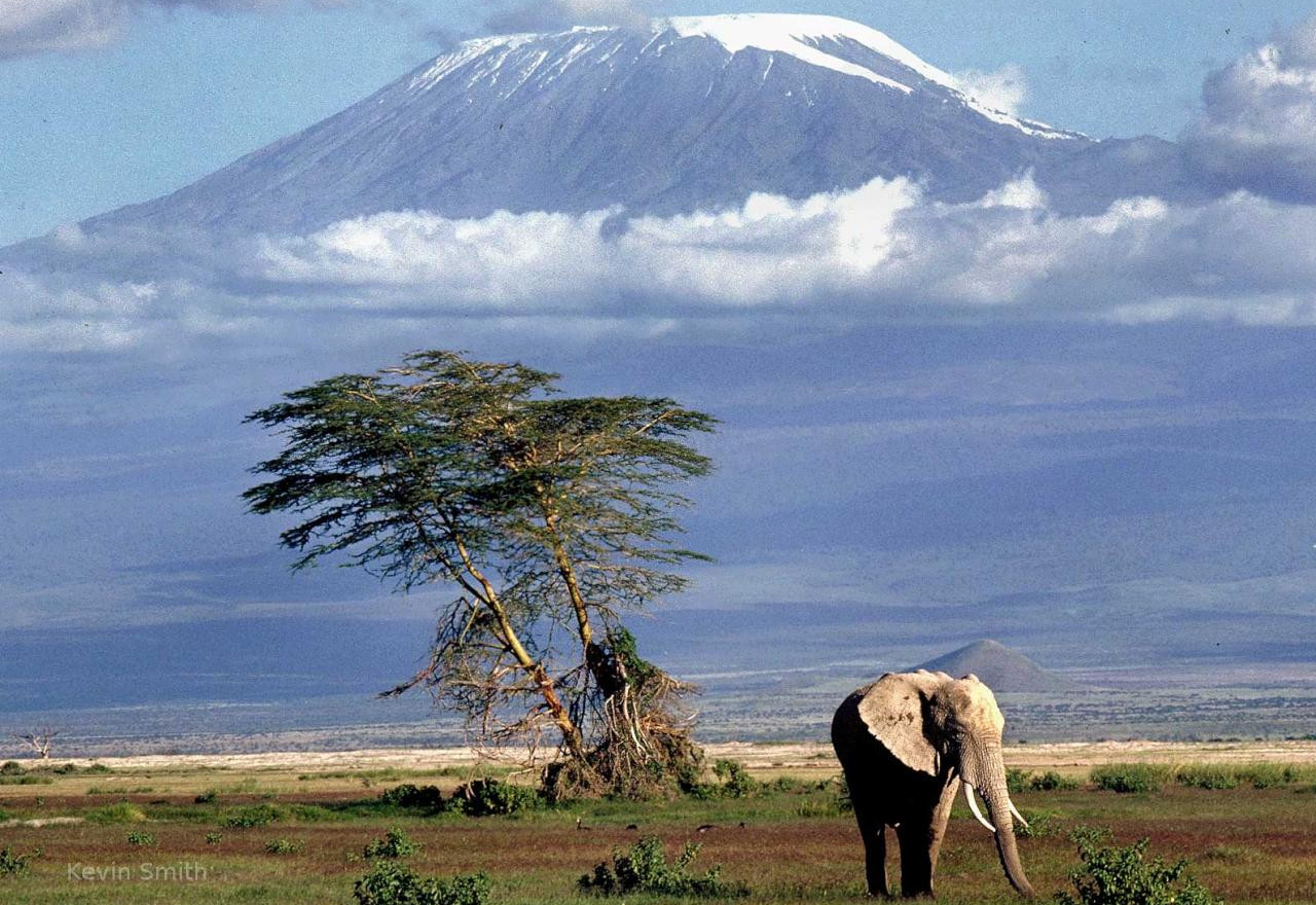 mountain-kilimanjaro.jpg