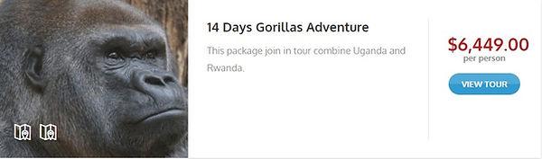 Exotik Tours Gorilla.jpg
