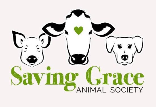 Saving Grace logo.jpg
