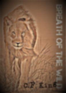 Breath of the Wild (2).jpg
