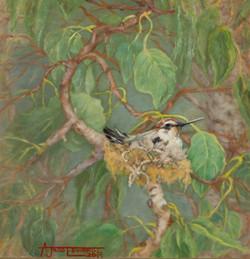 The Heart String Nest