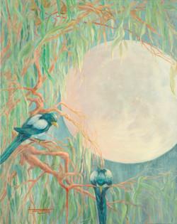 Moonbeams and Magpies