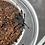 """Thumbnail: Cyriopagopus sp. hati hati 2-3 instar (1/2""""-3/4"""")"""